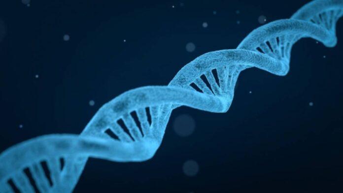Simbolična fotografija, DNA