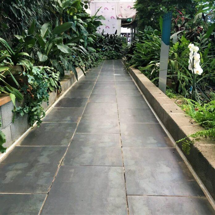 Tropski vrt, Dobrovnik